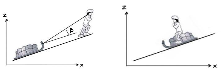 exercice montée et descente luge et comparaison des théorèmes de l'énergie cinétique et mécanique